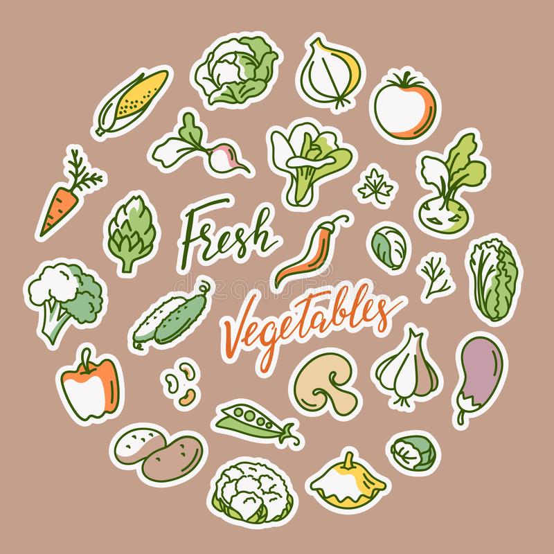 Vector illustration of vegetable with a place for text. Vector hand has drawn vegetable background with place for text illustration. Sketch doodle set. Various stock illustration
