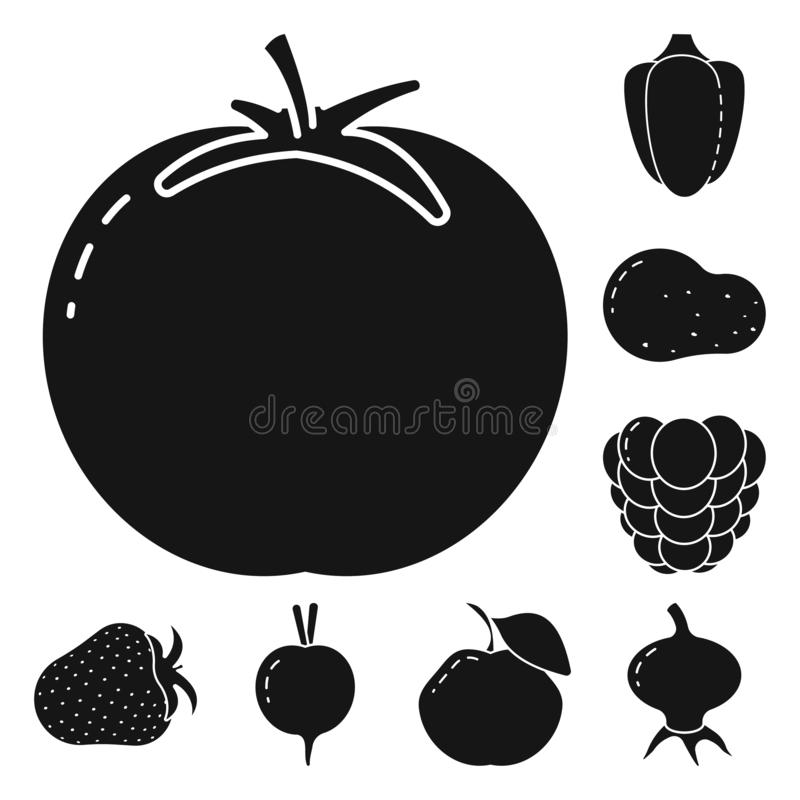Vector design of vegetarian and organic sign. Collection of vegetarian and food stock symbol for web. Vector illustration of vegetarian and organic logo. Set of stock illustration