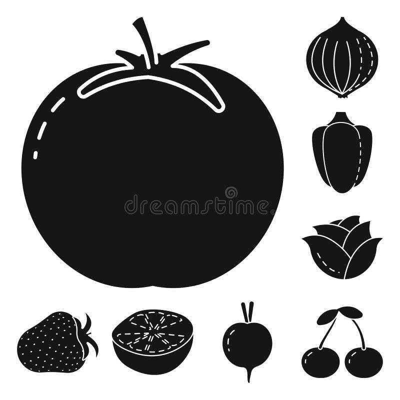 Vector design of vegetarian and organic symbol. Collection of vegetarian and food stock symbol for web. Vector illustration of vegetarian and organic sign. Set stock illustration