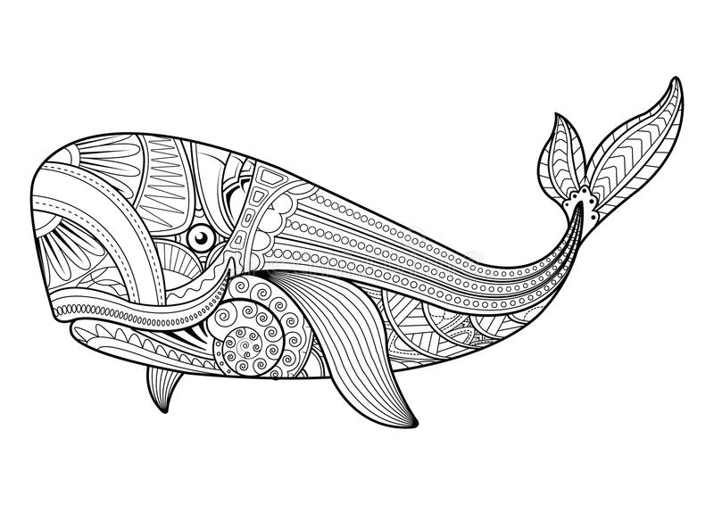 Vector illustration of whale coloring pages. stock illustration