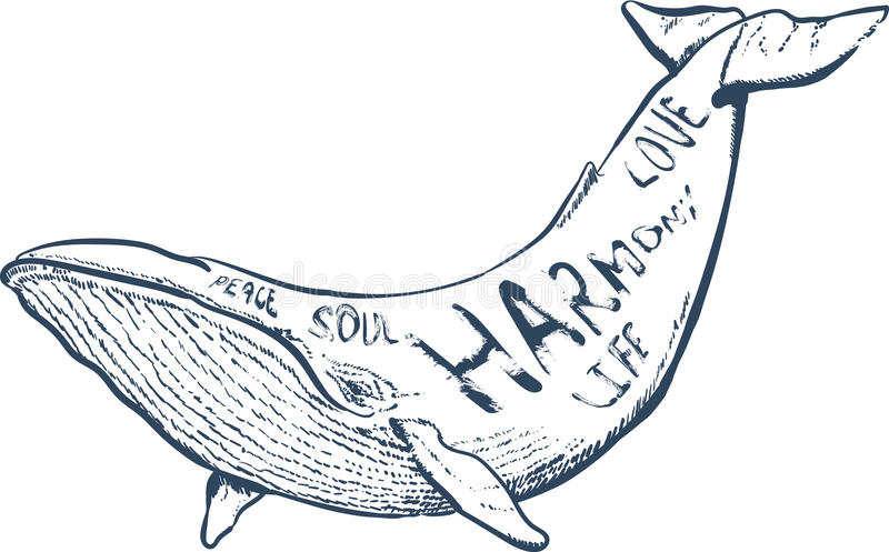 Vector illustration with whale, nautical hand drawn lettering, royalty free stock photography