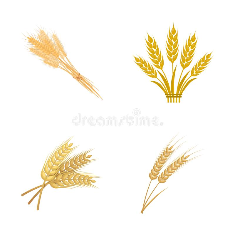 Vector design of wheat and stalk logo. Set of wheat and grain stock vector illustration. royalty free illustration