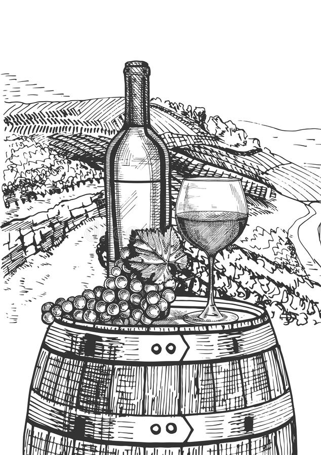 Wine still life vector illustration