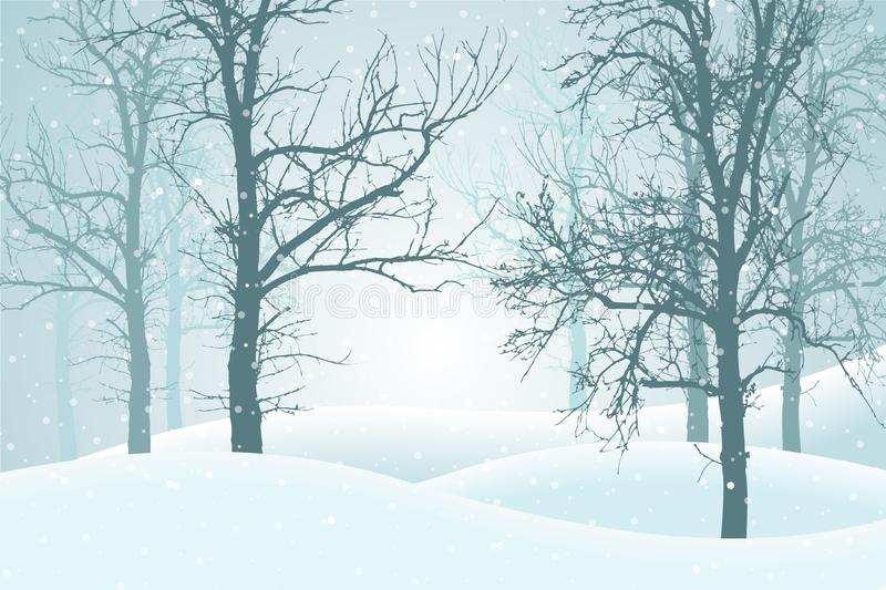 Vector illustration of winter forest with snow and mist, suitable as Christmas card vector illustration