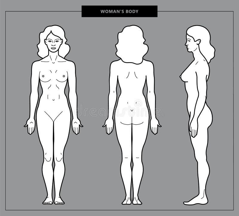 Illustration of woman body royalty free illustration