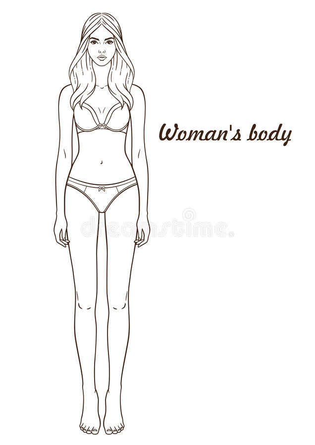 paper doll template woman - vector illustration of woman s body stock vector