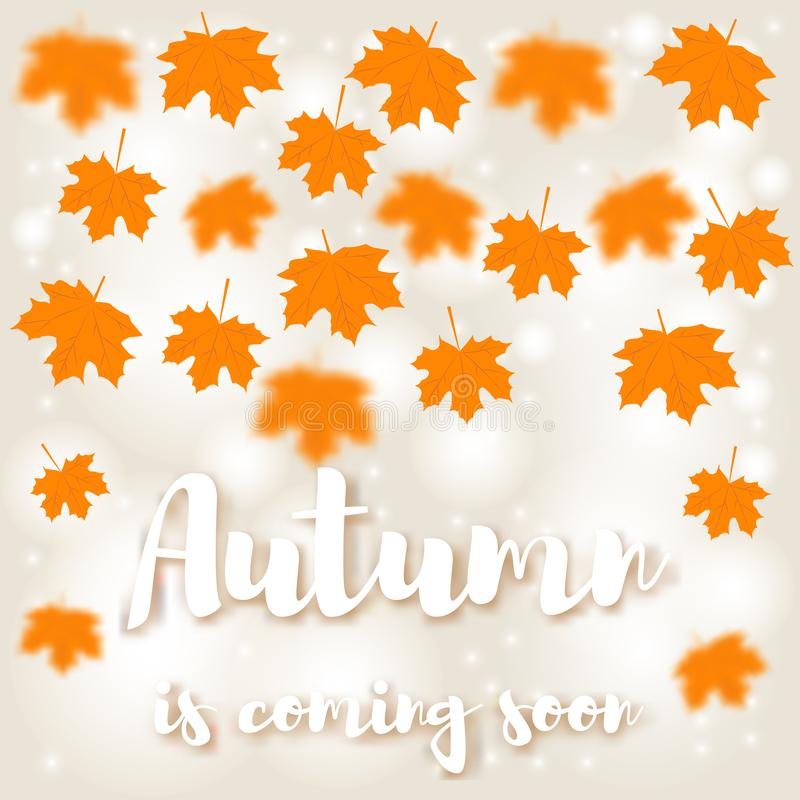 Yellow autumn maple leaves are flying. Inscription Autumn is coming royalty free illustration