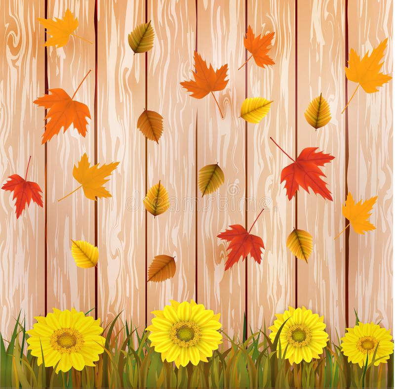 Vector illustration of an yellow sunflower with fall leaves on an brown wooden background. Ready elements with background stock photos