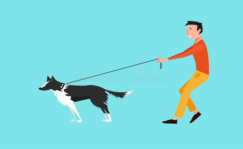 Vector Illustration: Young Man Walk the Dog Black and White Border Collie. The Dog Pulls on a Leash. vector illustration