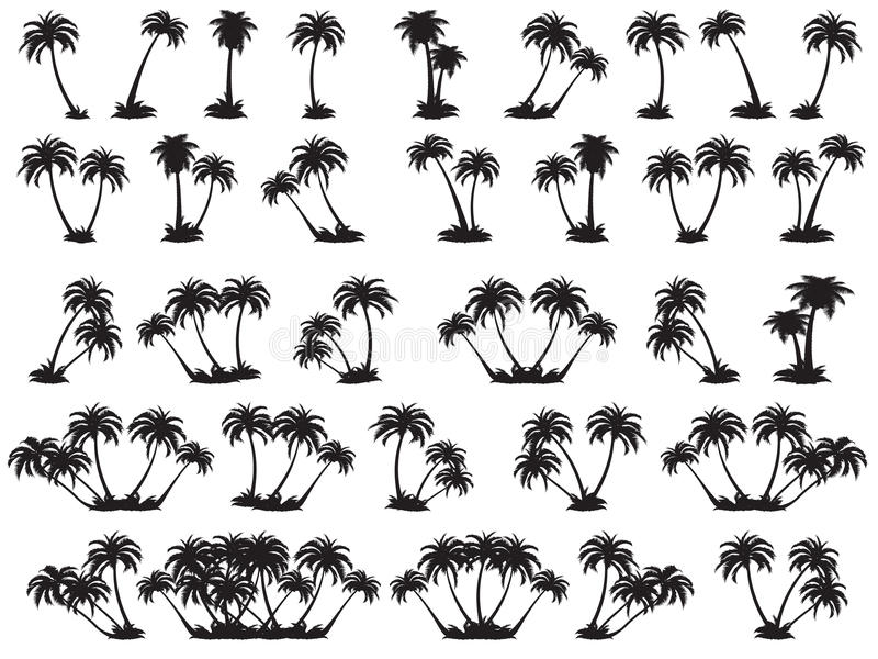 Vector illustrations silhouette of palm trees. A set of black trees on a white background vector illustration