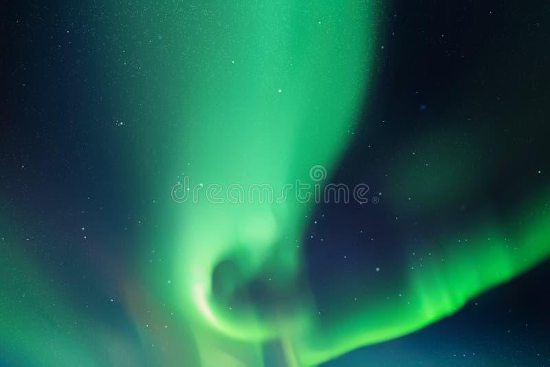 Vector a ilustração com o céu e aurora boreal estrelados bonitos ilustração do vetor