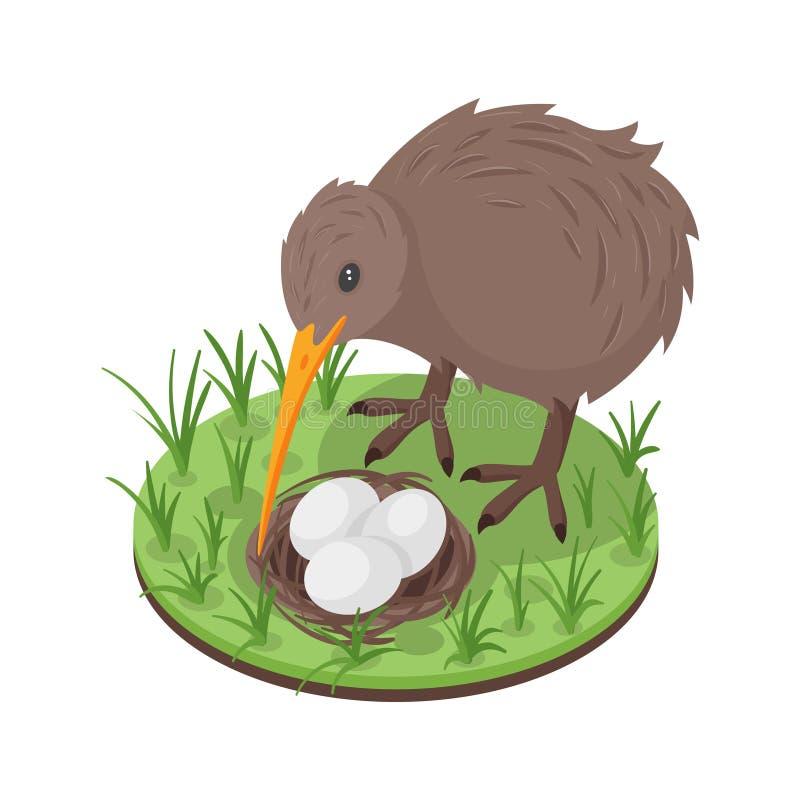 Vector a ilustração 3d isométrica do pássaro do quivi perto do ninho ilustração do vetor
