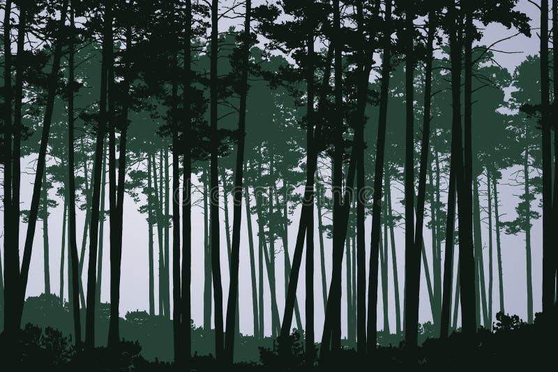 Vector a ilustração da floresta profunda conífera verde com árvores altas, sob o céu nebuloso cinzento ilustração stock