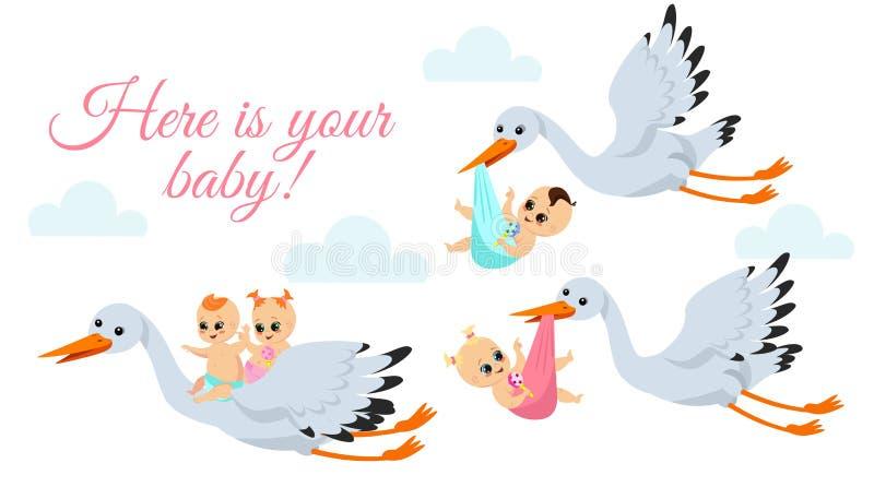 Vector a ilustração de cegonhas felizes do voo com babys recém-nascidos Levar dos pássaros da cegonha babyboy e babygirl nos saco ilustração do vetor