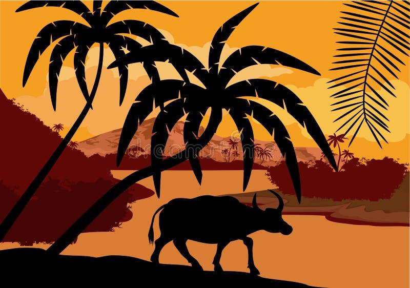 Vector a ilustração de China com o búfalo no pantanal da floresta úmida da selva ilustração stock