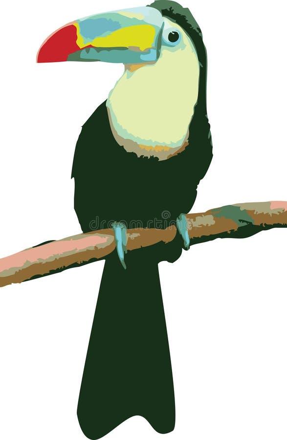 Vector a ilustração de um papagaio ilustração royalty free