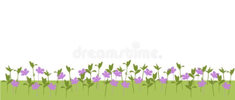 Vector a ilustração de um prado com as flores e as plantas e a grama isoladas ilustração do vetor