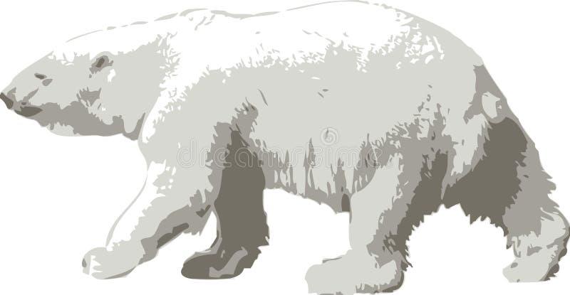 Vector a ilustração de um urso polar ilustração do vetor
