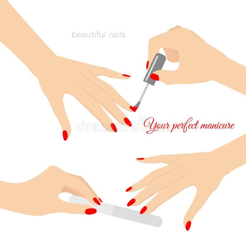Vector a ilustração do conceito do tratamento de mãos, saúde do prego Cuidado das mãos e dos pregos Projeto, verniz para as unhas ilustração stock