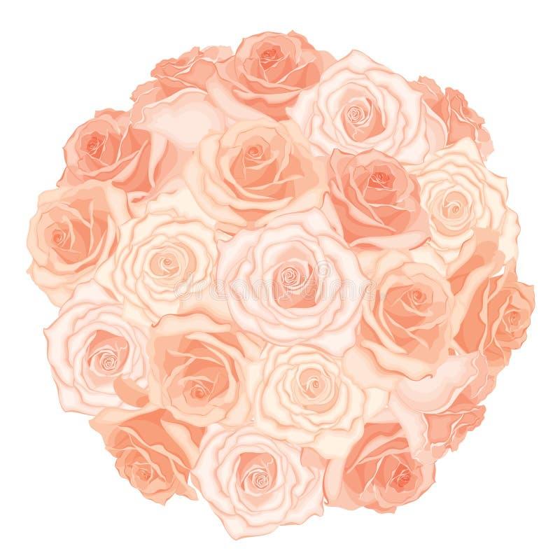 Vector a ilustração do ramalhete realístico, detalhado das rosas na cor do pêssego no fundo branco ilustração stock