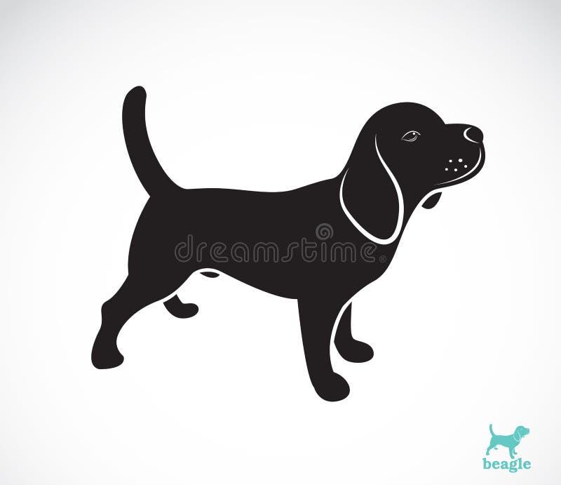 Vector image of beagle dog. On white background royalty free illustration