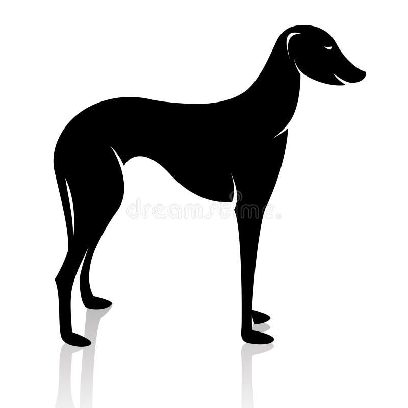 Vector image of an dog (azawakh)