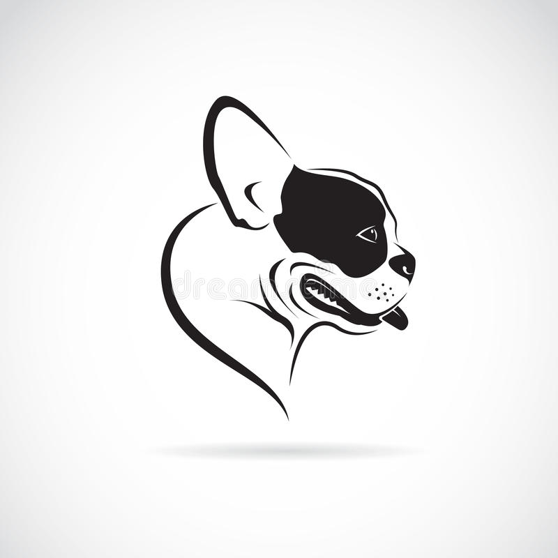 Vector image of an dog (bulldog) vector illustration