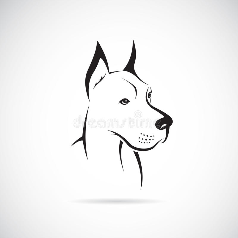 Vector image of an dog (Great Dane). On white background