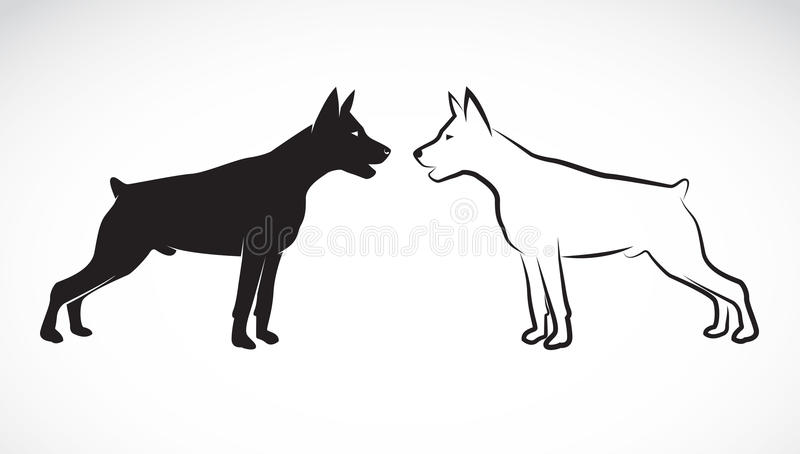 Vector image of an dog (Great Dane). On white background vector illustration