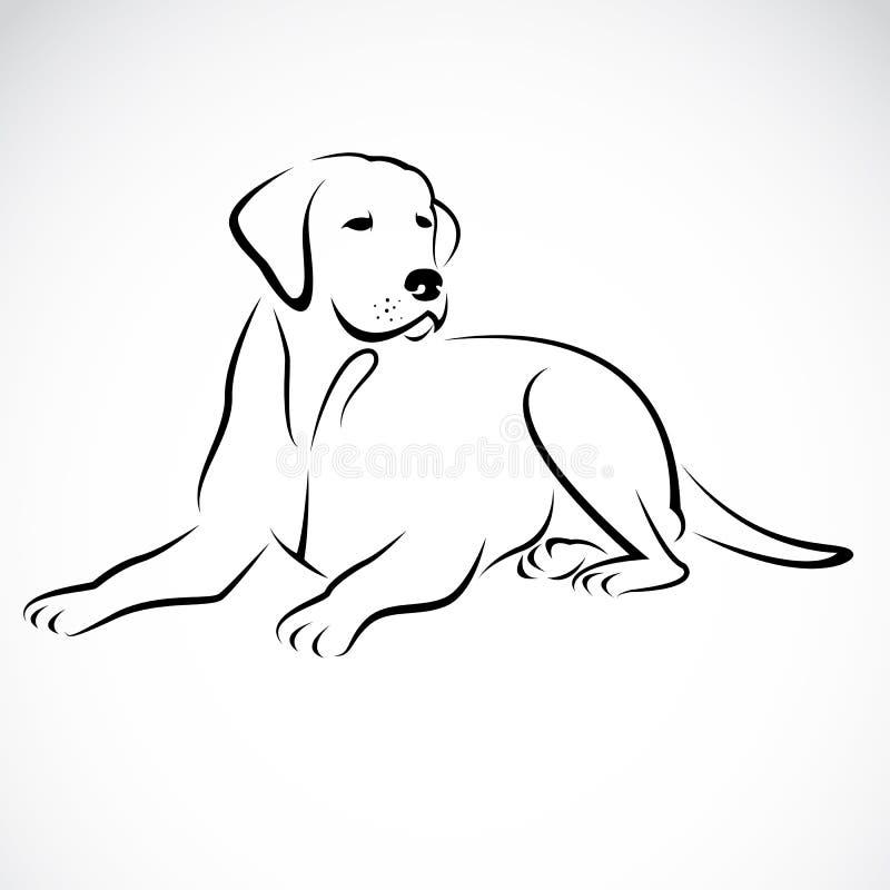 Vector image of an dog labrador royalty free illustration