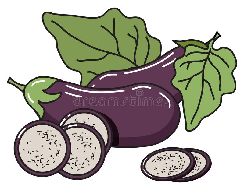 Vector image of eggplant with leaves and slices. stock illustration