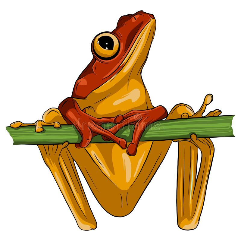 Vector image of an frog design on white background, vector illustration