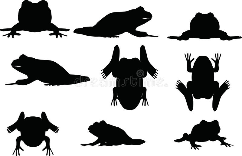 Vector Image - frog silhouette on white background vector illustration