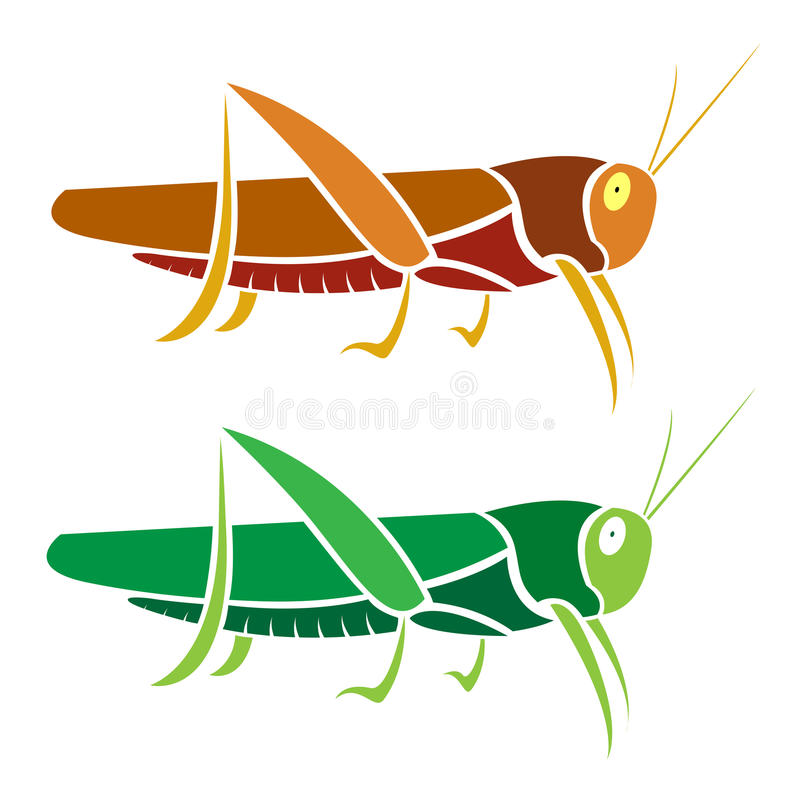 Vector image of an grasshopper. On white background vector illustration