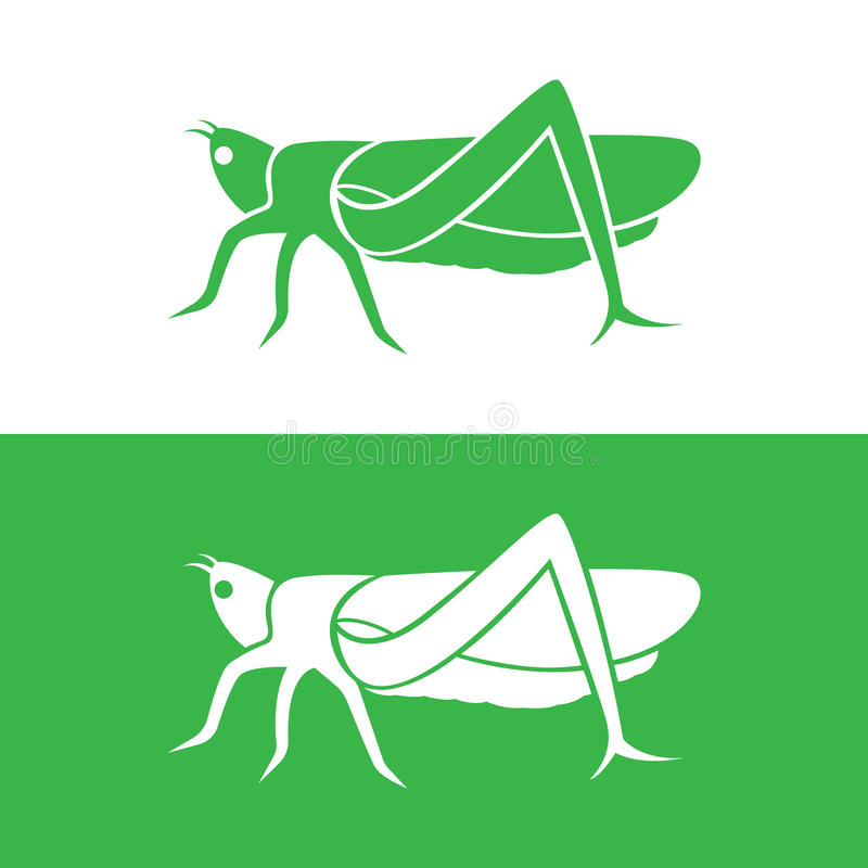Vector image of an grasshopper design. On white background and green background vector illustration