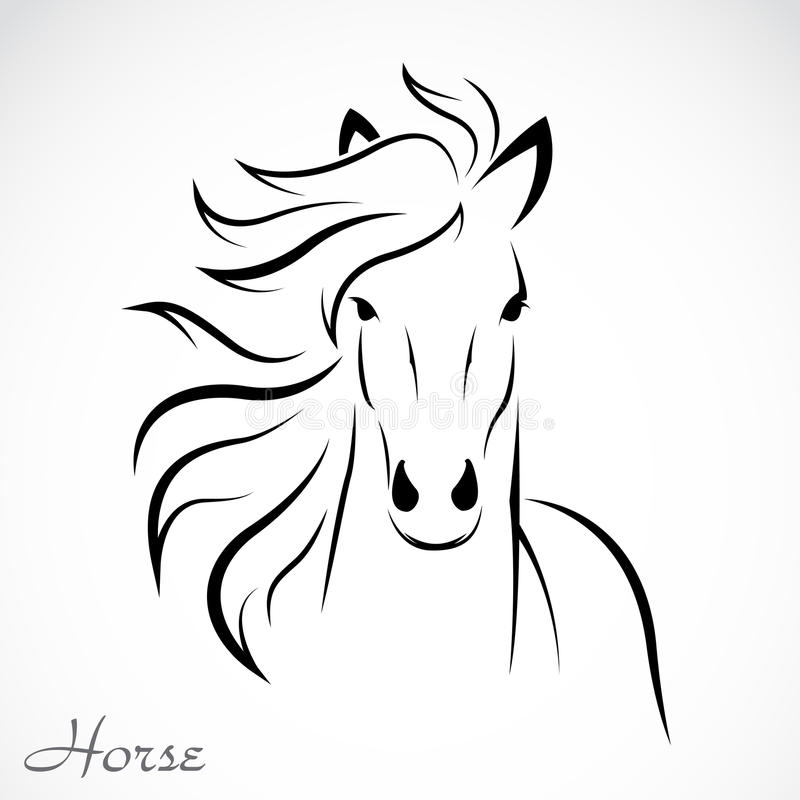 Vector image of an horse royalty free illustration