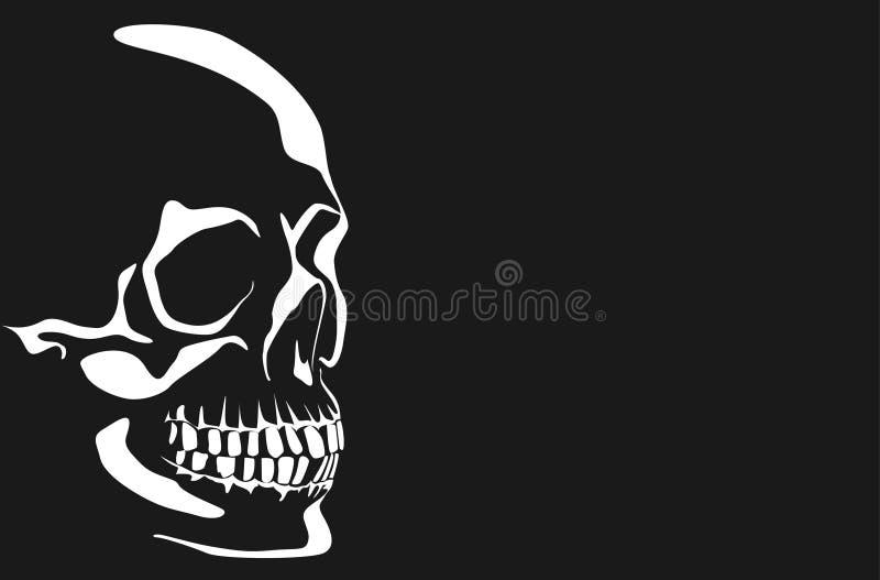 Vector Image Of A Human Skull Royalty Free Stock Photos