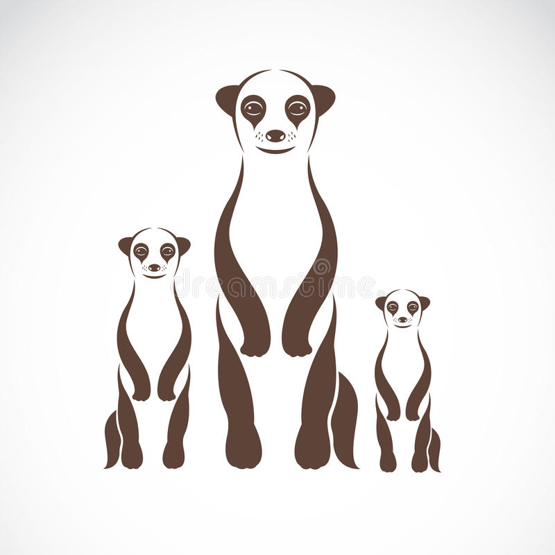 Vector image of an meerkats vector illustration