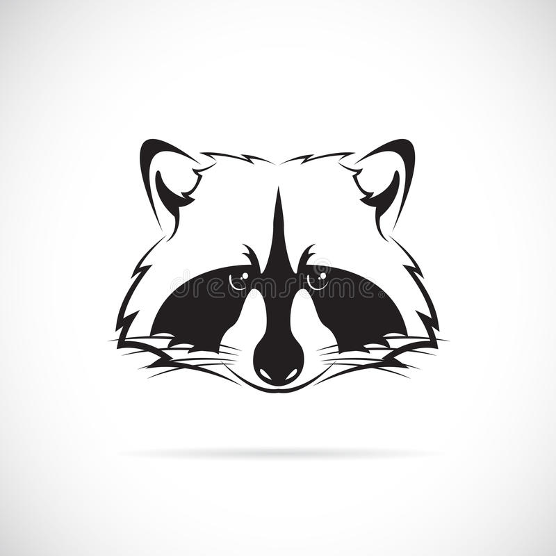 Free Vector Image Of A Raccoon Face Royalty Free Stock Image - 45506726