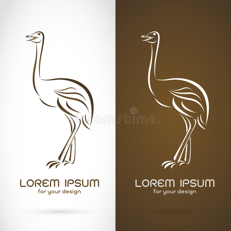 Vector image of a ostrich design stock illustration
