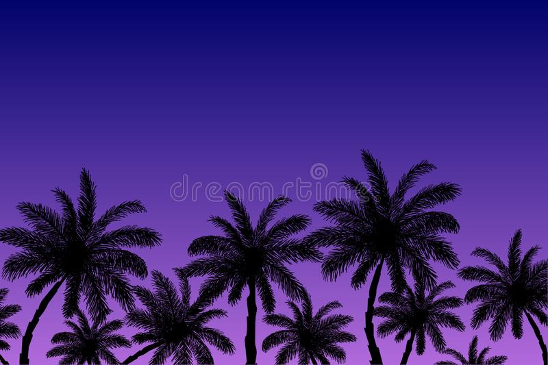 Vector image of silhouettes of palm trees on a background of blue-purple sky at sunset. Summer beach illustration.  vector illustration