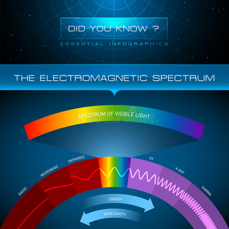 Vector Infographic - The Electromagnetic Spectrum stock illustration