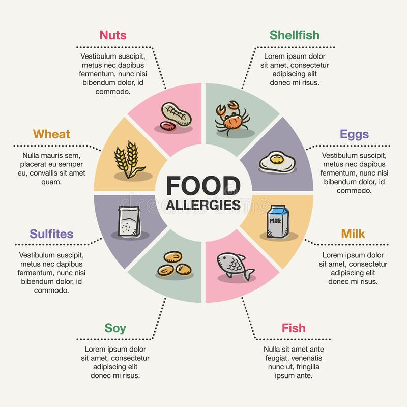 Food allergies infographic. Vector infographic template for food allergies stock illustration