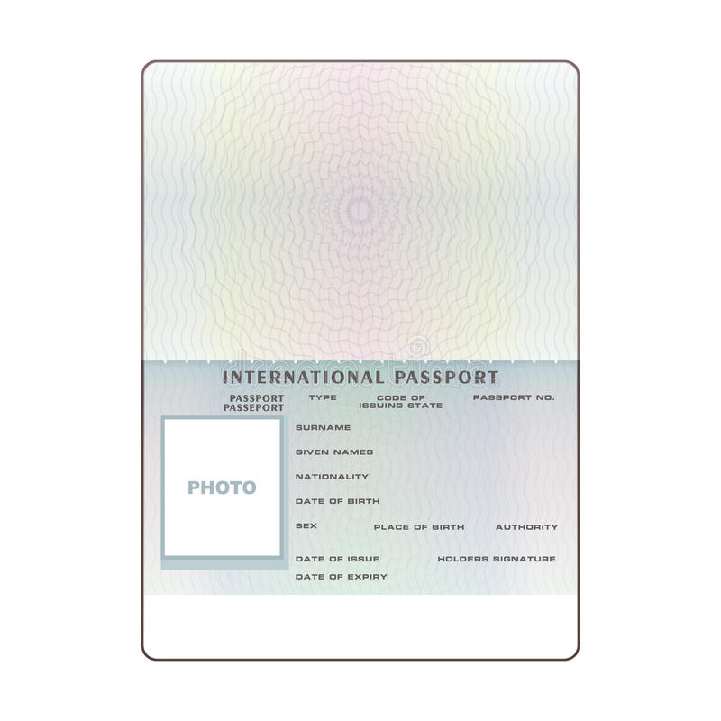 Vector International Open Passport Blank Template Stock Vector