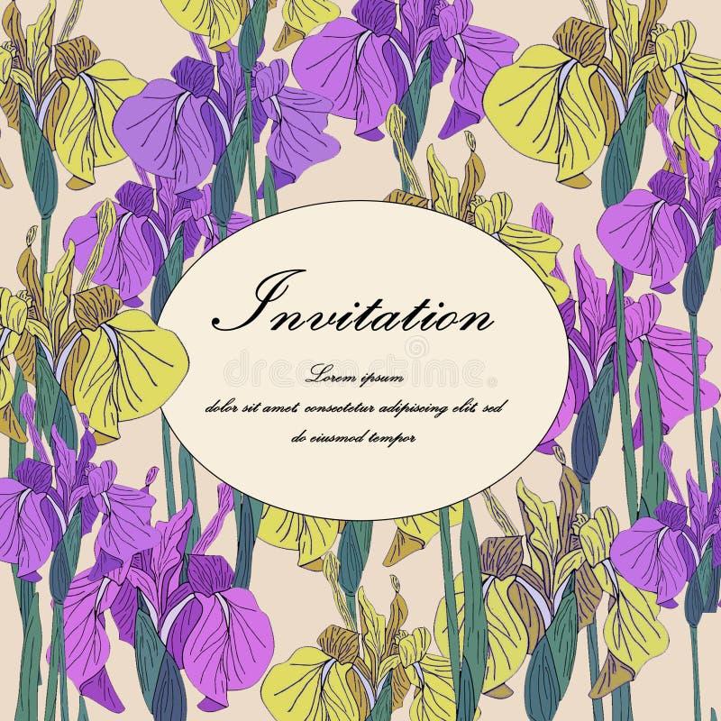 Vector Iris floral botanical flower. Wedding background card floral decorative border stock illustration