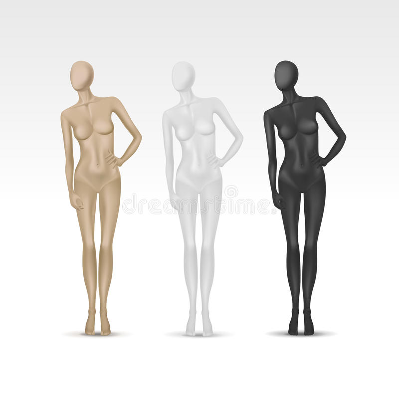 Free Vector Isolated Female Mannequin Royalty Free Stock Photography - 34659407