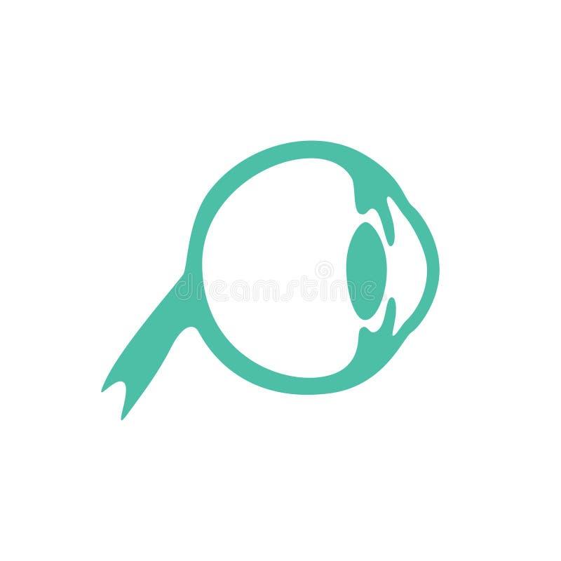 Vector isolated illustration of eye. Anatomy. Human ocular system icon. Healthcare medical center, surgery, hospital, clinic, diagnostic logo. Internal donor stock illustration