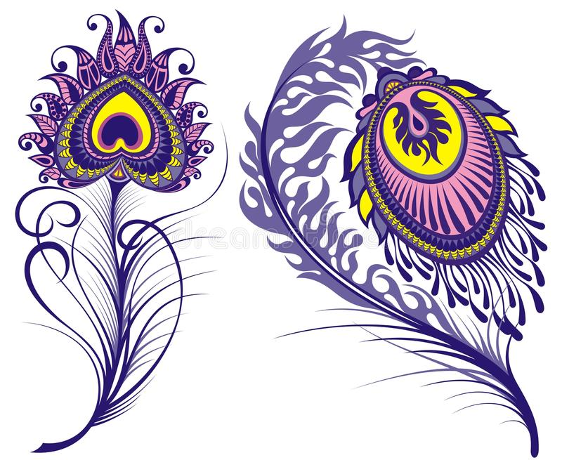 Vector isolated peacock feathers royalty free illustration