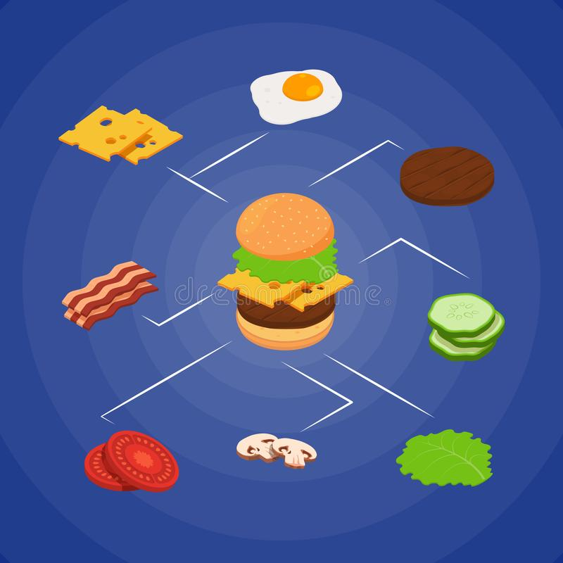 Vector isometric burger ingredients infographic concept illustration royalty free illustration