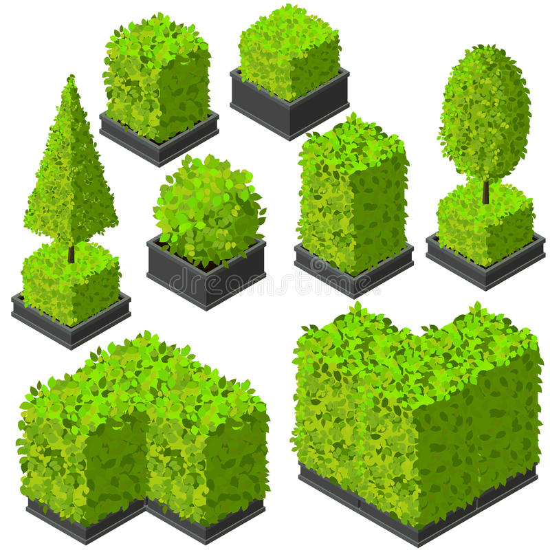 Vector isometric trees and decorative bushes royalty free illustration